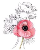Anemone by Number I Art Print