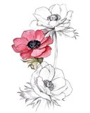 Anemone by Number II Art Print