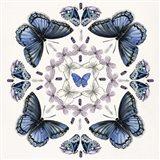 Butterfly Mandala II Art Print