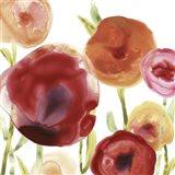 Poppy Patch III Art Print