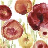 Poppy Patch IV Art Print