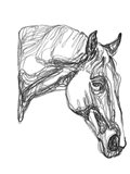 Equine Contour III Art Print