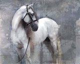 Horse Exposures II Art Print