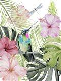 Hibiscus & Hummingbird II Art Print