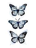 Blue Butterfly Trio I Art Print