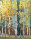 Aspen Grove I Art Print