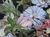 Dark Velvet II Art Print