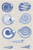 Navy & Linen Shells V Art Print