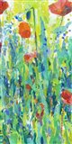 Stately Red Poppies II Art Print