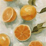 Fresh Citrus I Art Print