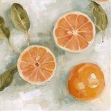 Fresh Citrus II Art Print