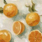 Fresh Citrus IV Art Print
