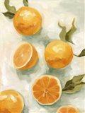 Fresh Citrus V Art Print