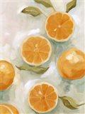 Fresh Citrus VI Art Print