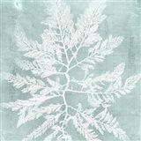 Seaweed on Aqua I Art Print