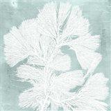 Seaweed on Aqua IV Art Print