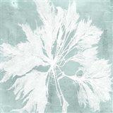 Seaweed on Aqua VI Art Print