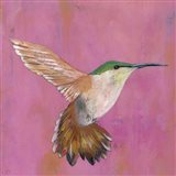Sweet Hummingbird I Art Print
