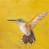 Sweet Hummingbird II Art Print