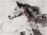 Winner Horse I Art Print
