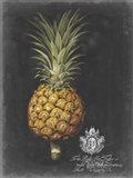 Royal Brookshaw Pineapple II Art Print