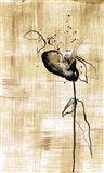 Gilded Beauty III Art Print