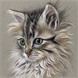 Kitten Portrait I Art Print
