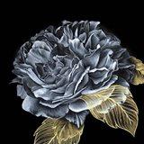 River Roses I Art Print