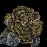 River Roses II Art Print