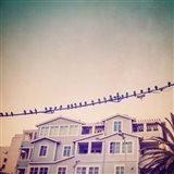 Birds on Wires I Art Print