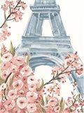 Paris Cherry Blossoms I Art Print
