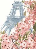 Paris Cherry Blossoms II Art Print
