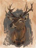Red Deer Stag II Art Print