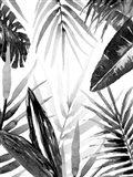 Jungle Walk I Art Print