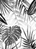 Jungle Walk II Art Print