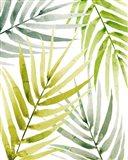 Shady Palm II Art Print