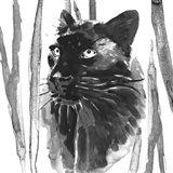 Still Cat I Art Print