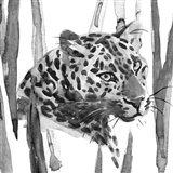 Still Cat II Art Print