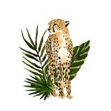 Cheetah Outlook I Art Print
