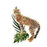 Cheetah Outlook II Art Print