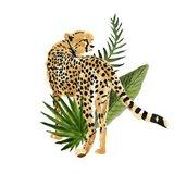 Cheetah Outlook III Art Print