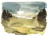 Alpine Wetlands I Art Print