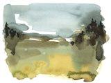Alpine Wetlands II Art Print