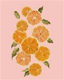 Spring Citrus I Art Print