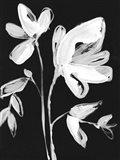 White Whimsical Flowers II Art Print