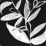 Quirky White Leaves I Art Print