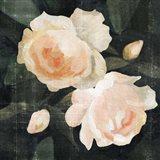 Soft Garden Roses I Art Print