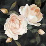 Soft Garden Roses II Art Print
