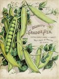 Antique Seed Packets V Art Print