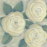 Roses in Bloom II Art Print